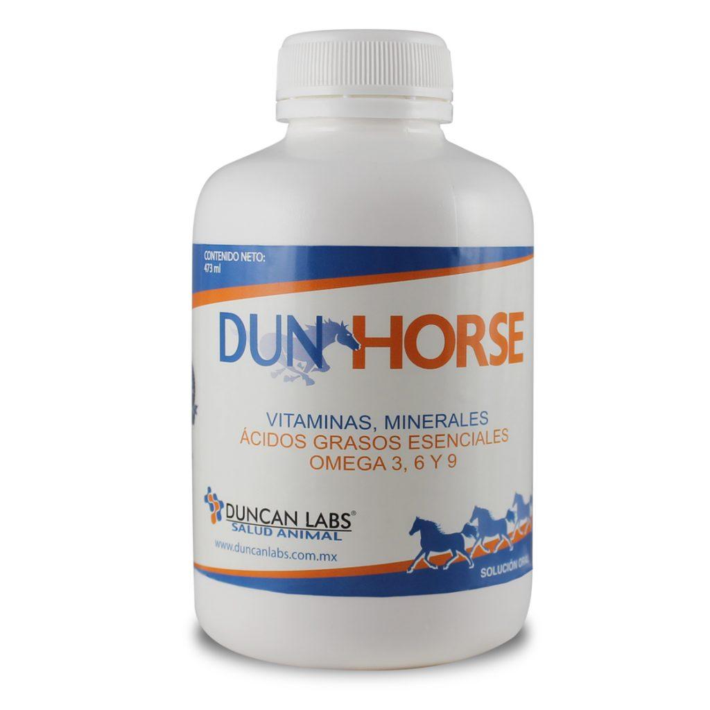 DUN HORSE